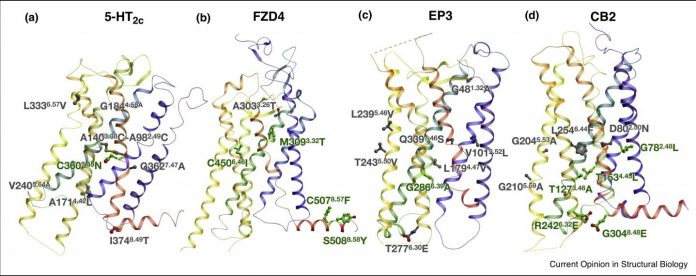 Structures of GPCRs
