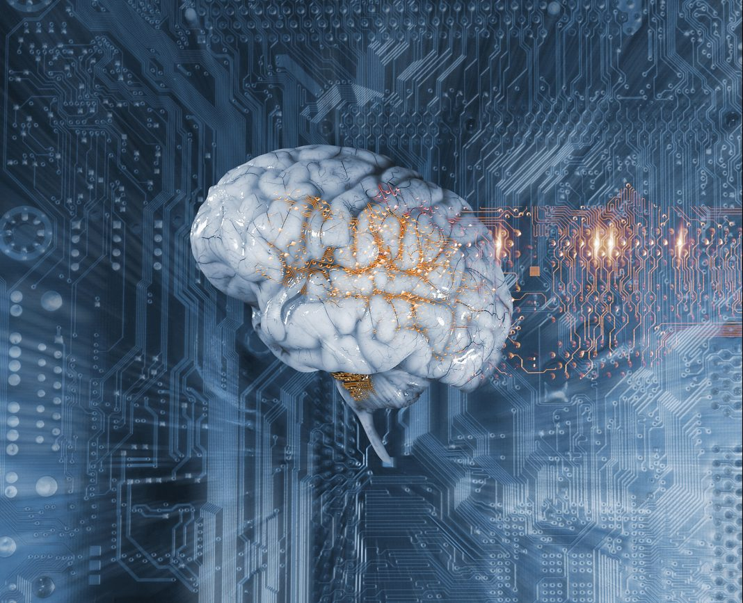 Human brain and circuit board, illustration