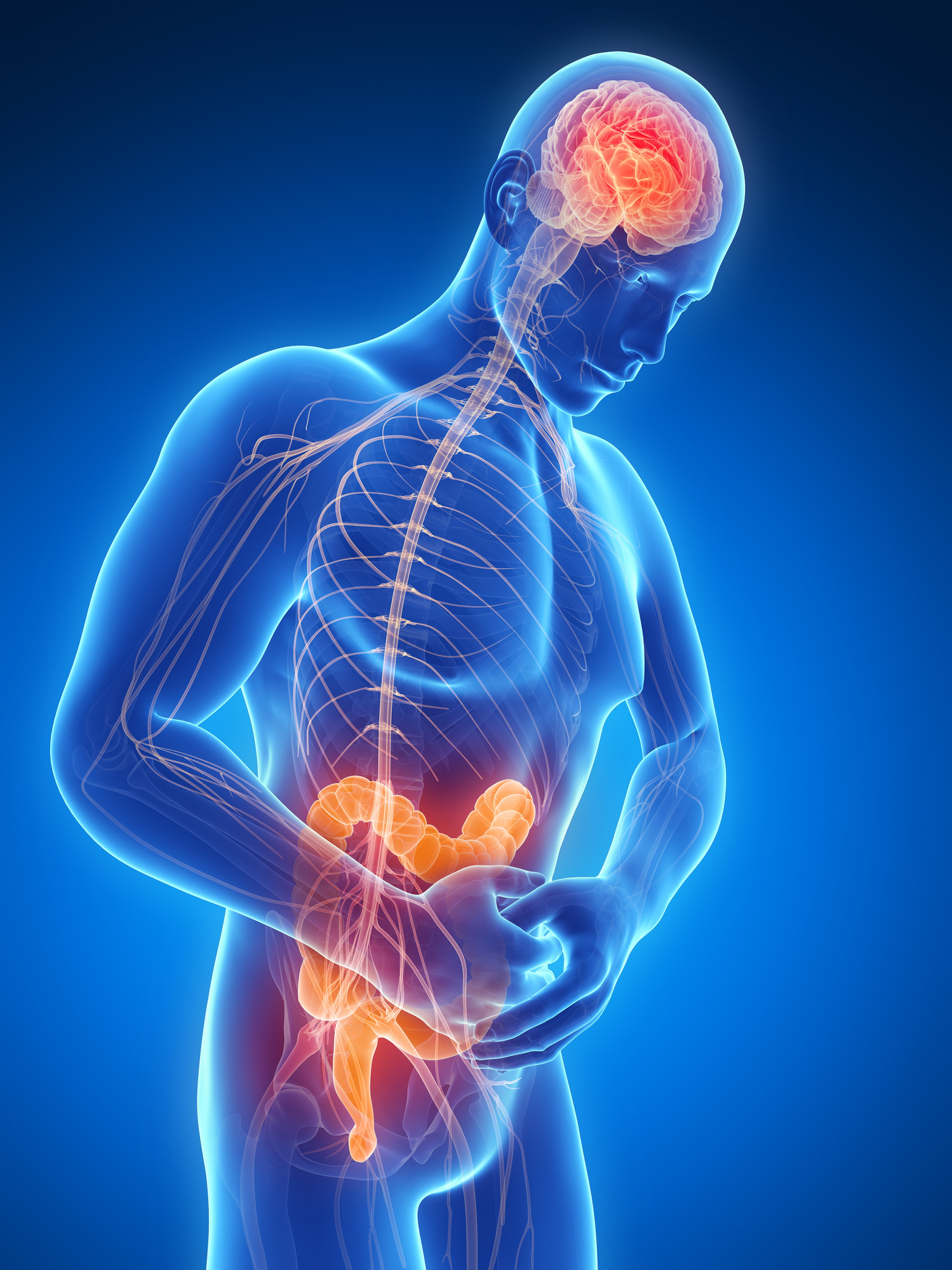 Depressed Brain and Gut Mediated by Serotonin Levels