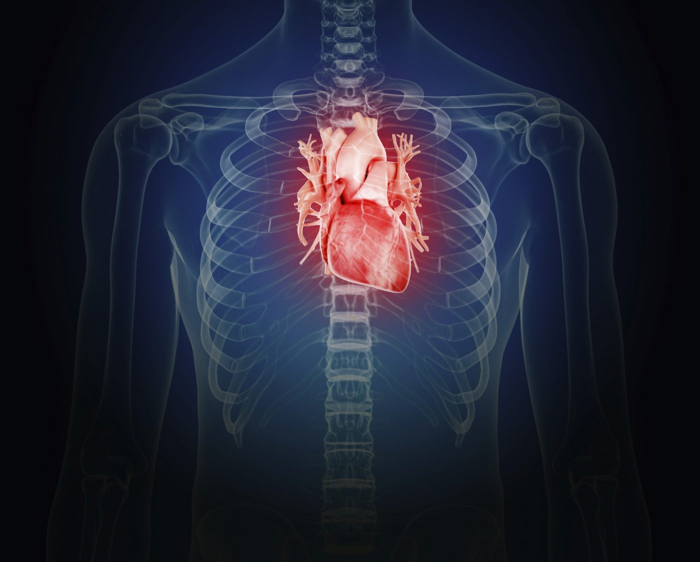 Post-Myocardial Infarction Treatment Shows Promise in Mice