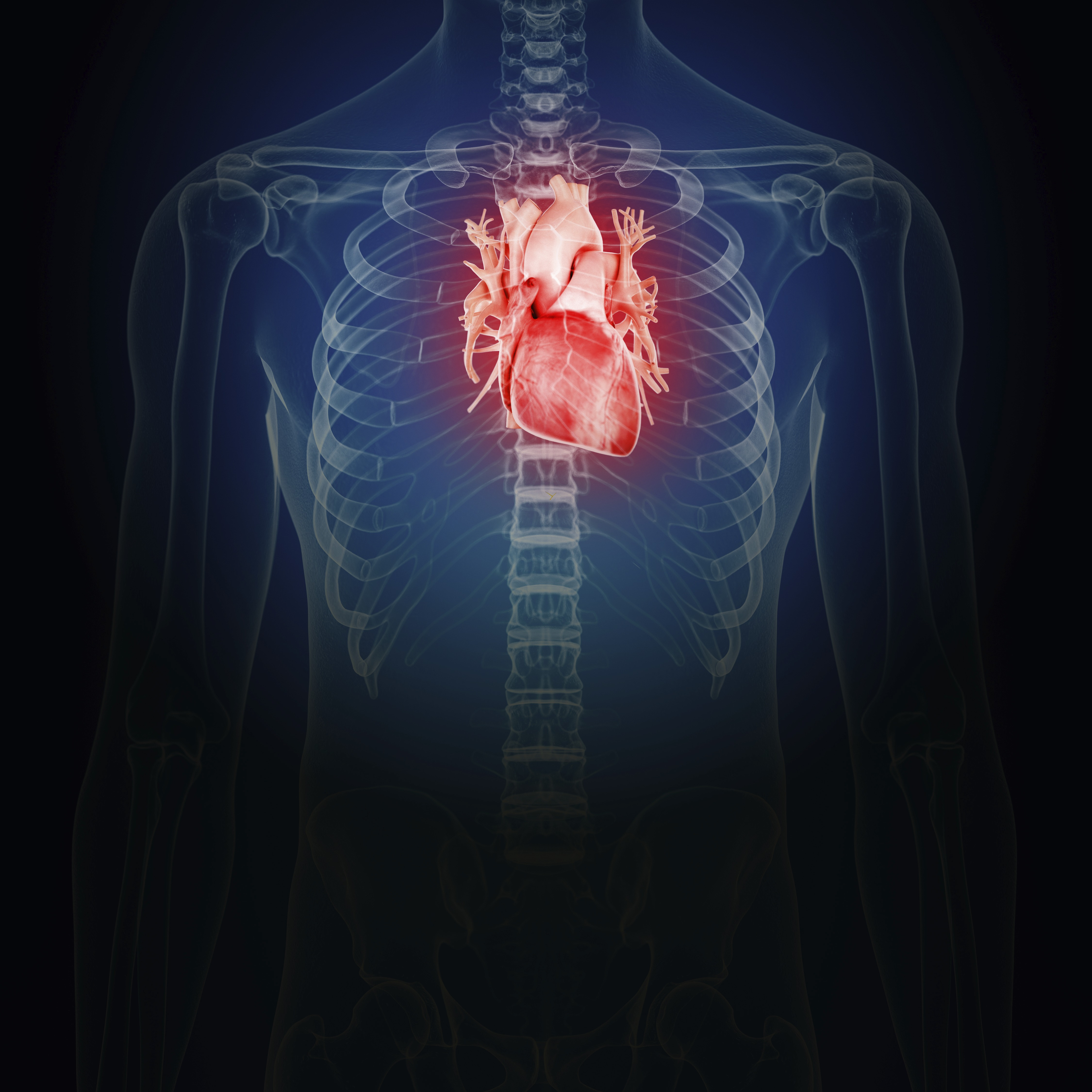 Embryonic microRNA Labeled as Fountain of Youth for Heart Cells