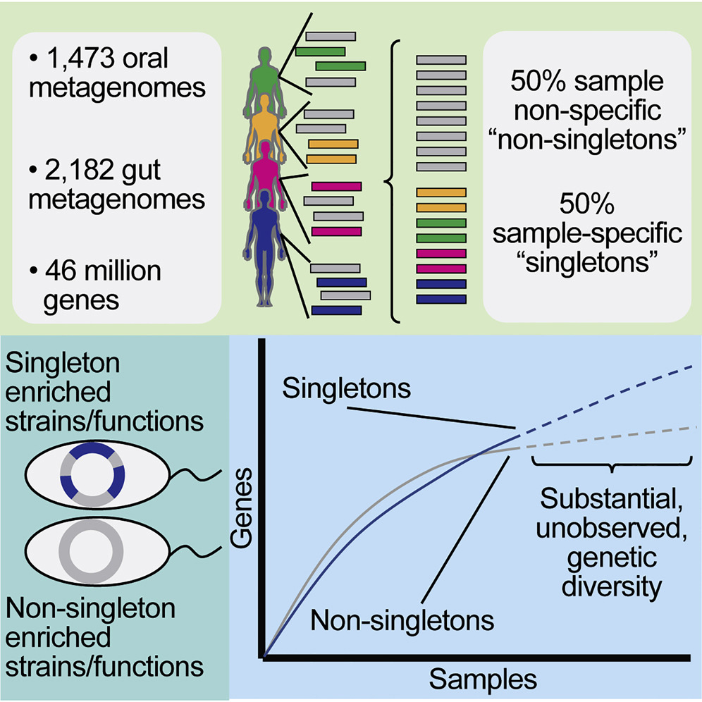 Microbiome Graphical Abstract