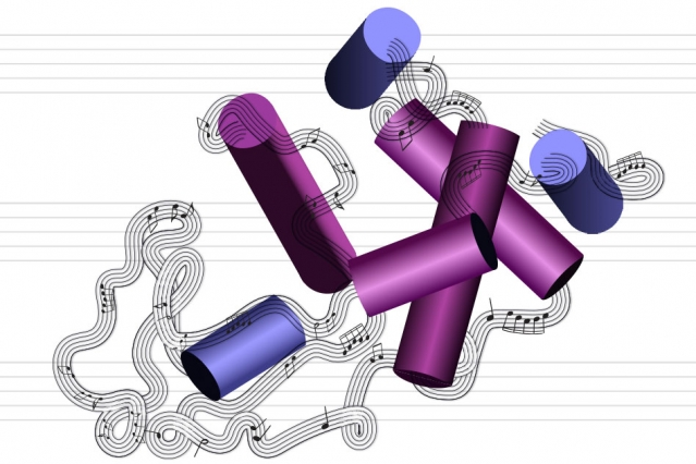 the conversion of the structure of a protein molecule into a musical passage