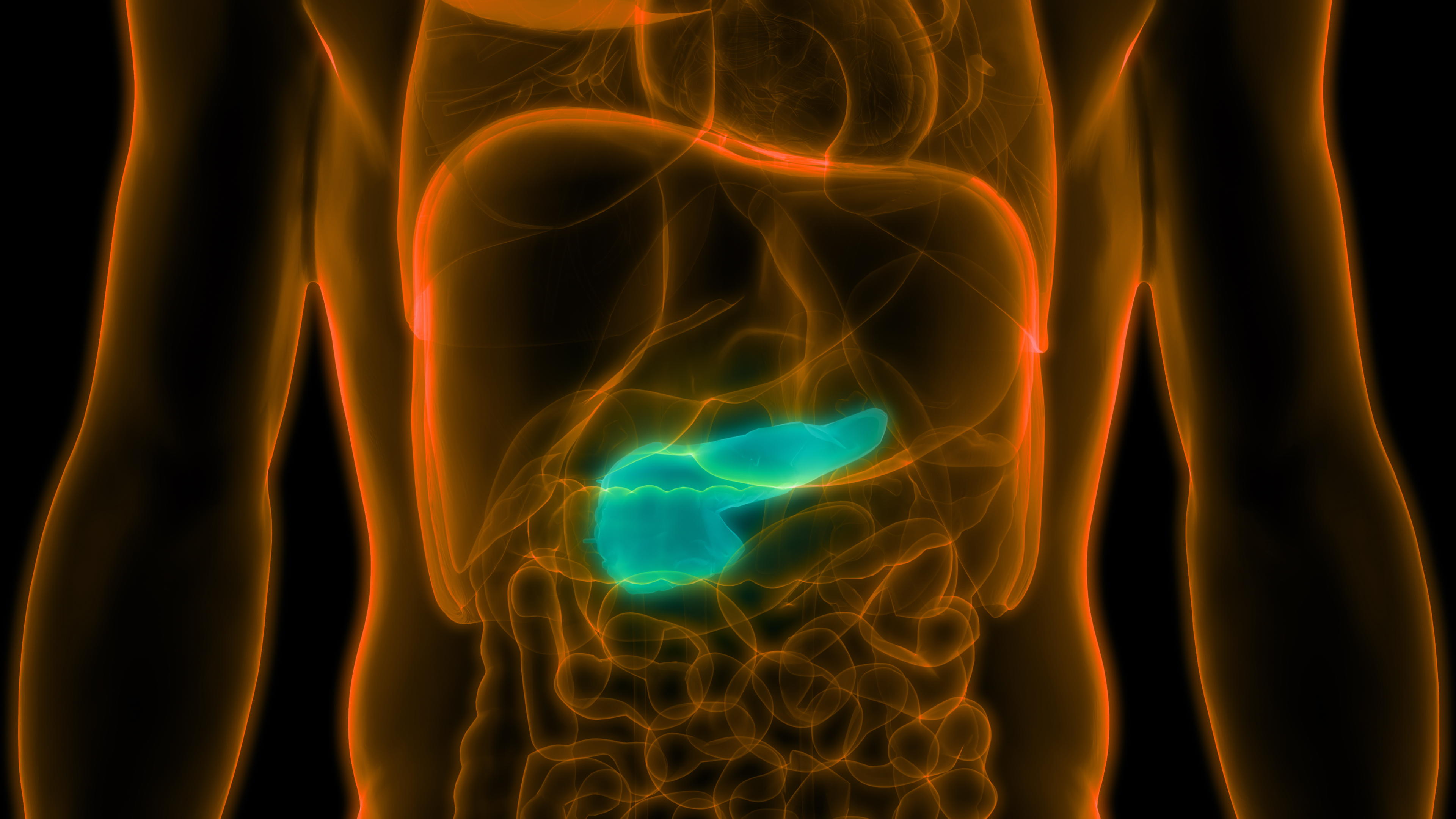 Pancreatic Cancer Treatment Successfully Targets Cell Cycle