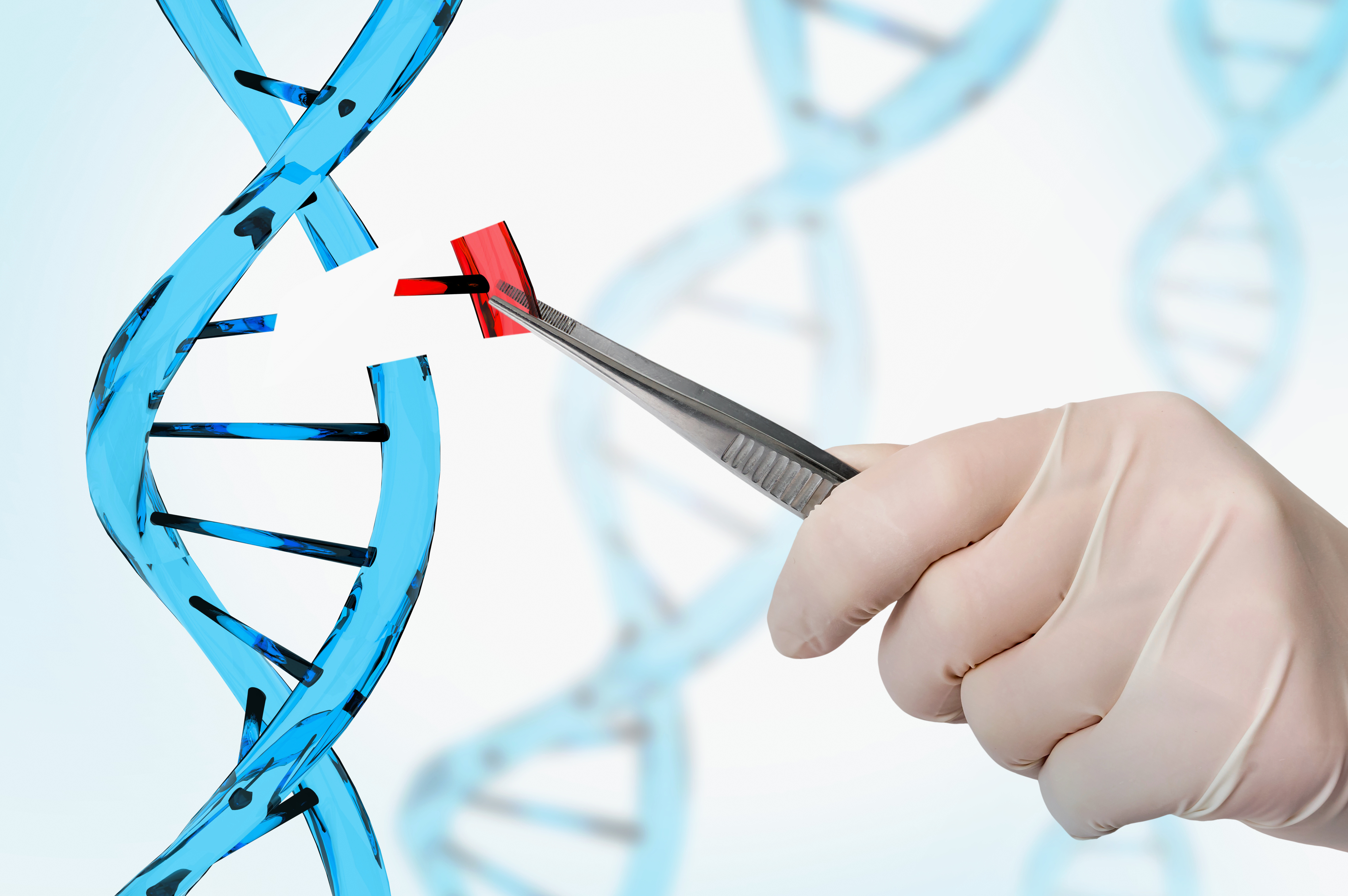 Improve your Gene Editing Success with CRISPR-SNIPER Technology