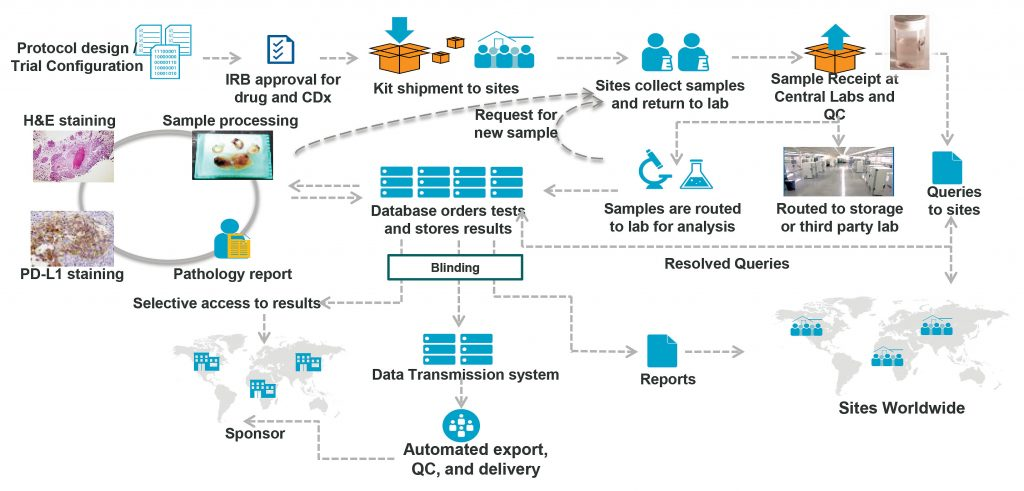 Q2 Solutions Operational Complexity
