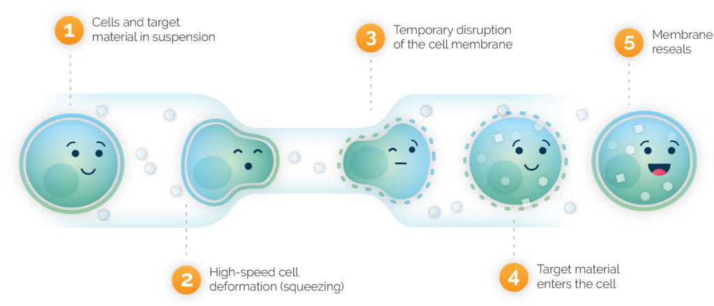 SQZ cell therapy platform