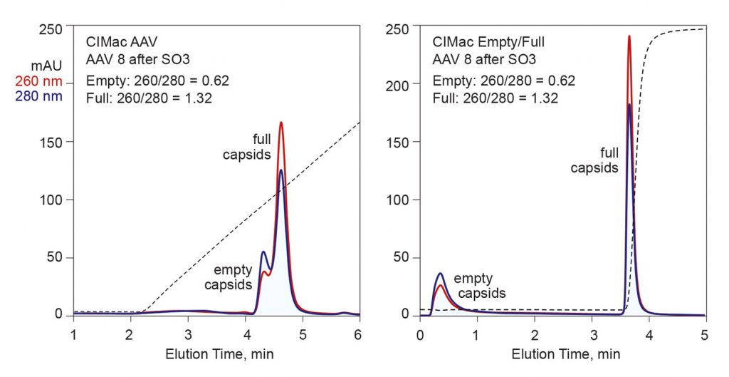 Figure 3. Fractionation of empty and full capsids