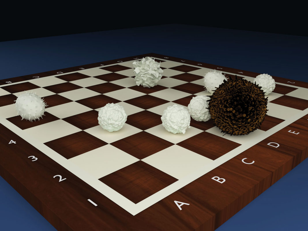 Chess board with cell pieces