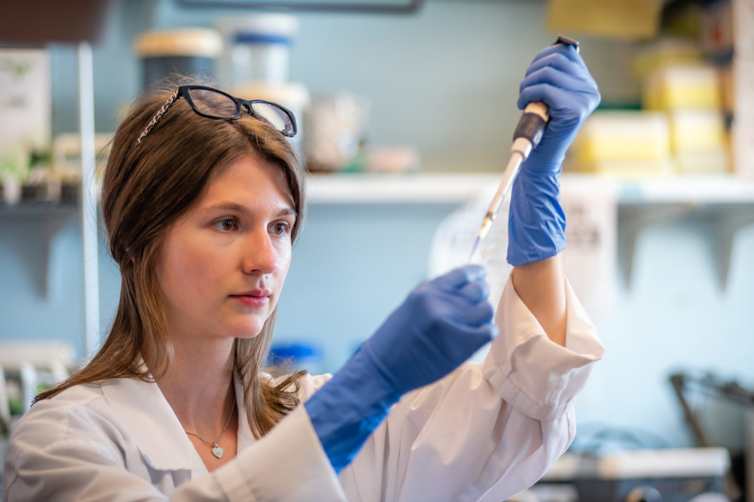 Woman scientist performing gene editing with crisper cas9 system