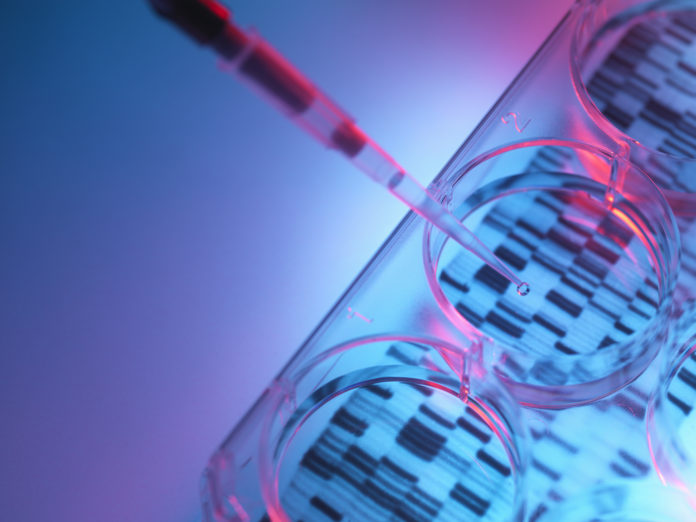 Pipetting sample into tray for DNA testing