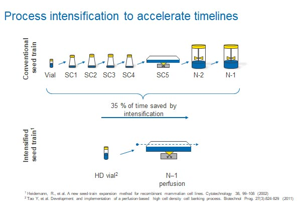 Process intensification to accelerate timelines