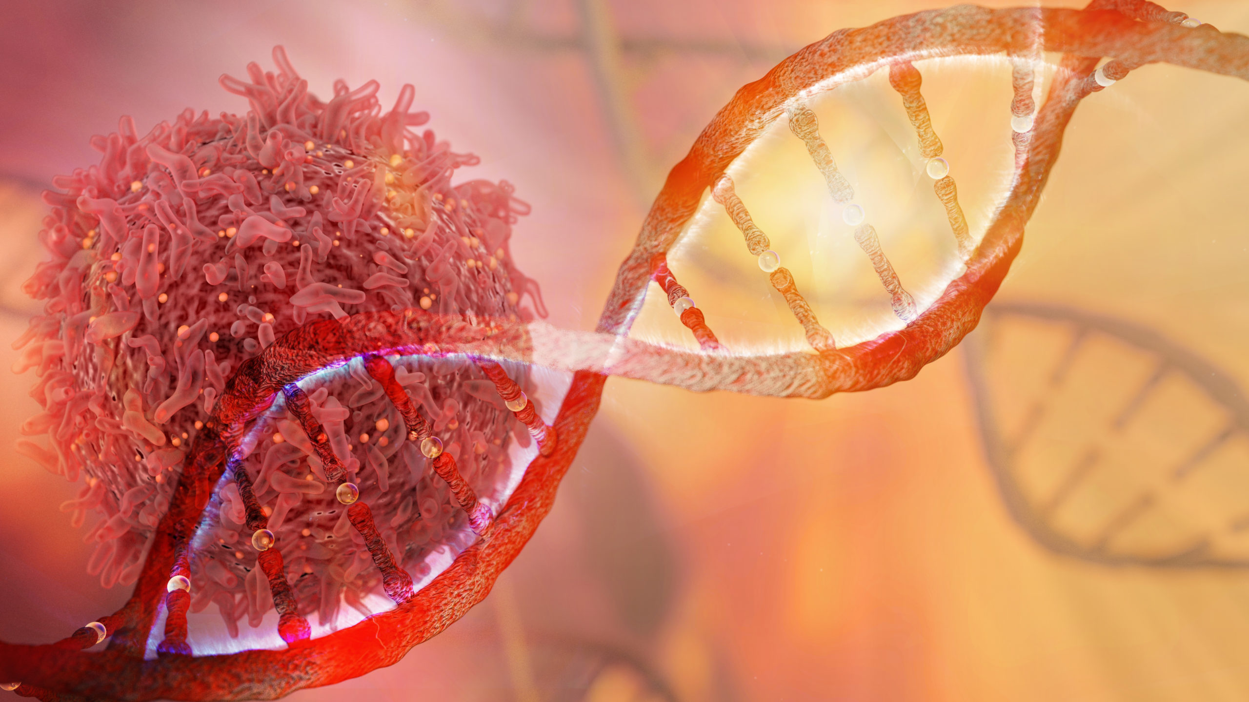 Researchers Unravel Four-Stranded DNA's Role in Breast Cancer