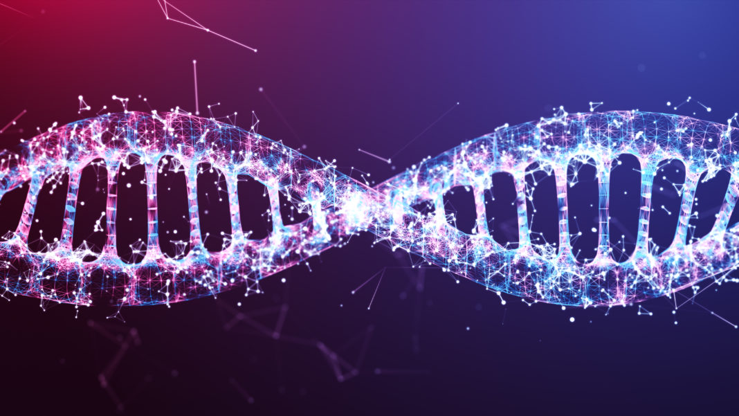 illustration DNA wire frame Futuristic digital  design,Abstract background for Business Science and technology