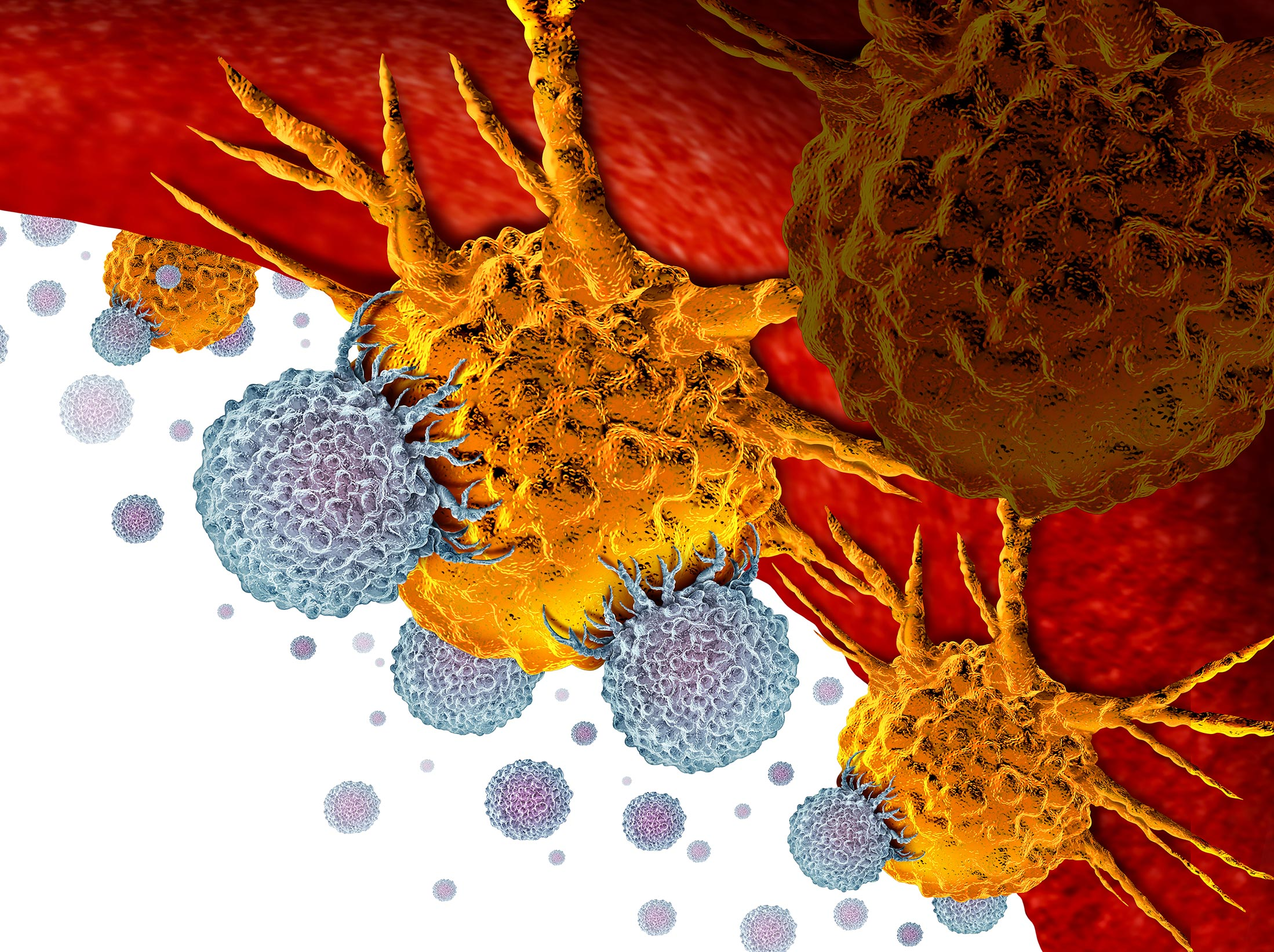 The Future of Drug Discovery: Live 3D Cell Analysis