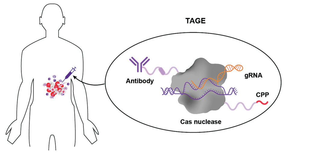 Targeted Active Gene Editing (TAGE)