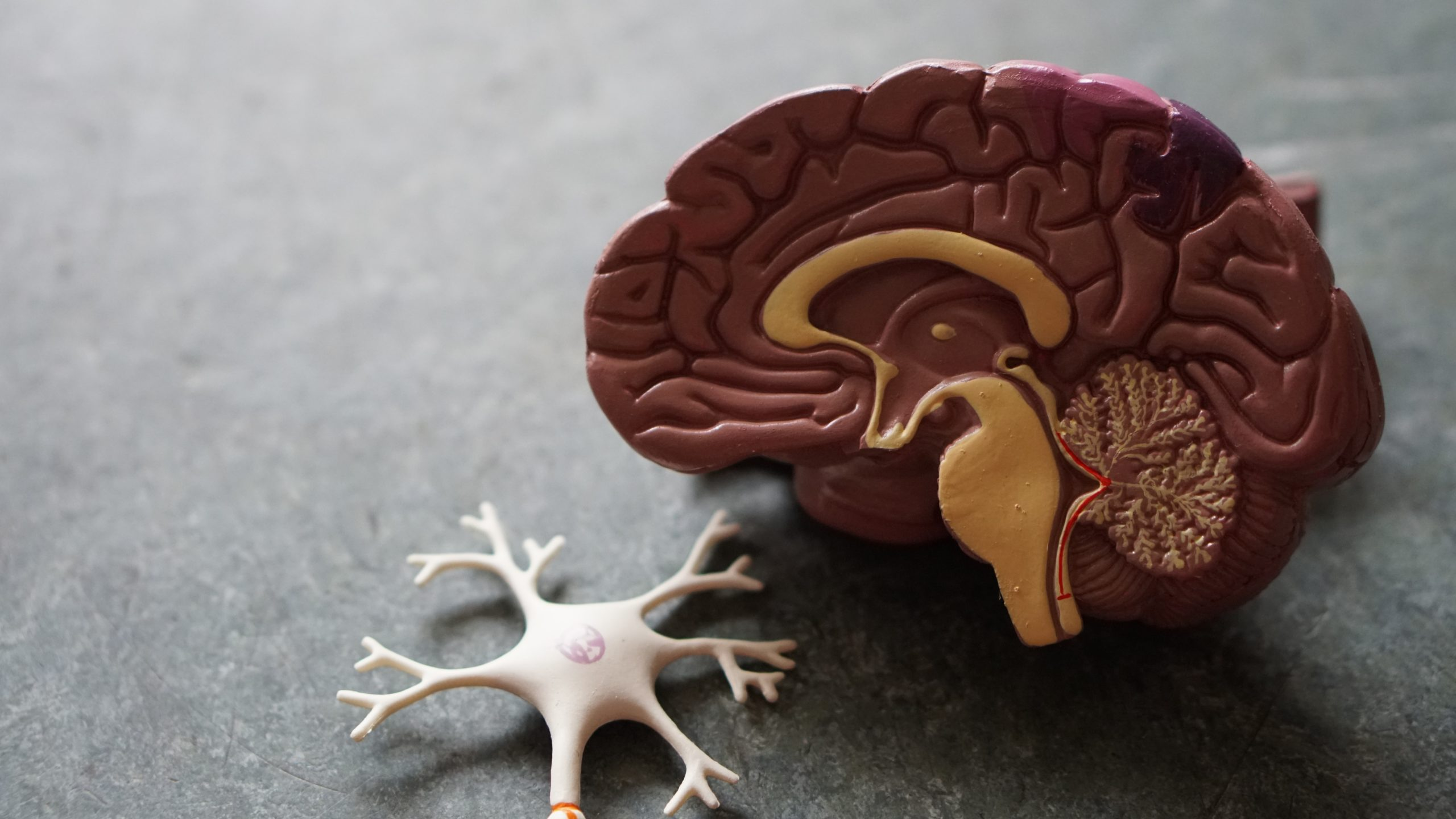 How to Recover Yourself from Alzheimer's Disease?