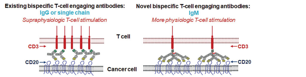 Cancer Biomarkers diagram