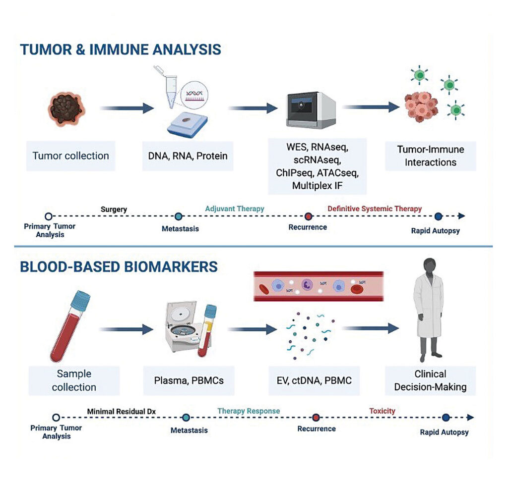 research on the molecular profiling of melanoma