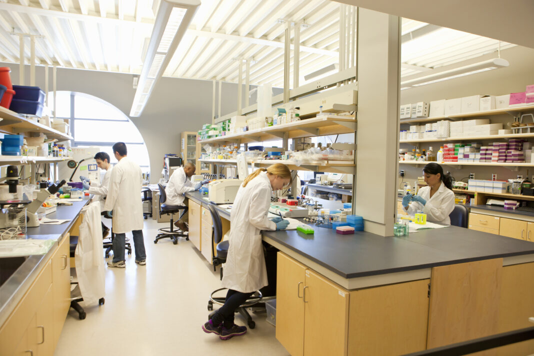 Group of laboratory technicians at work
