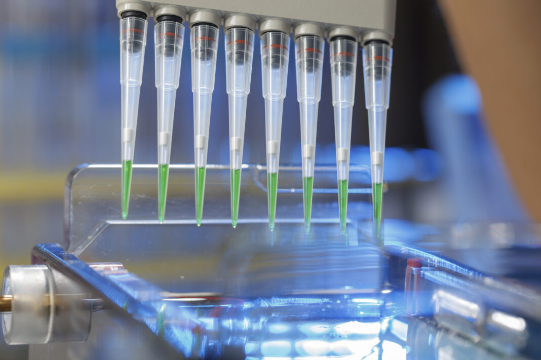 Pipetting samples for gel electrophoresis